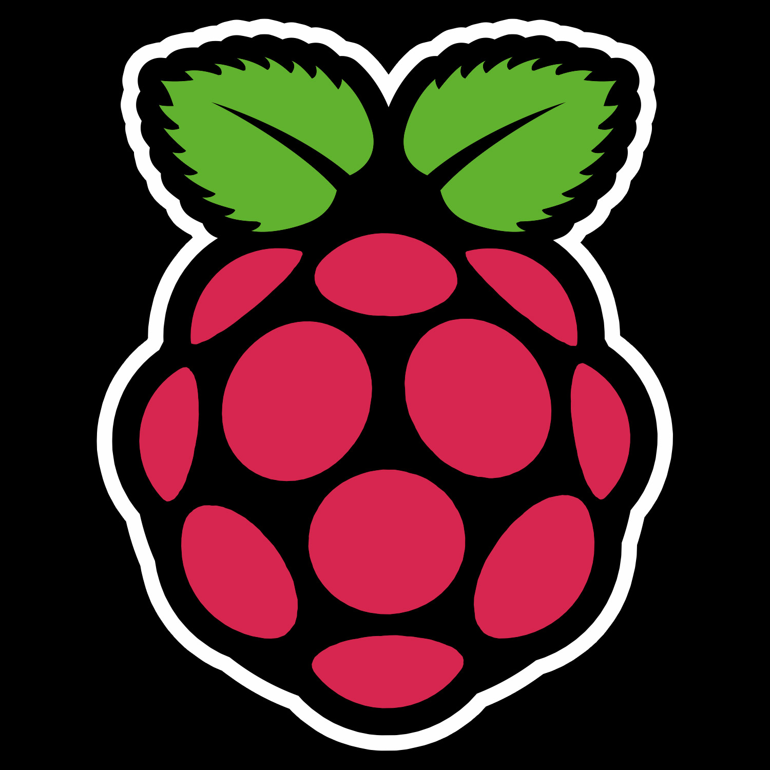 raspberryPi-logo-black-backer