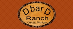 D bar D Ranch Michigan - Website Design Example