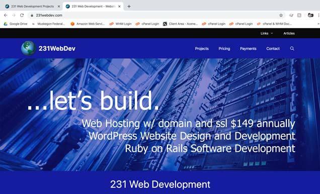 231 Web Development Website screenshot