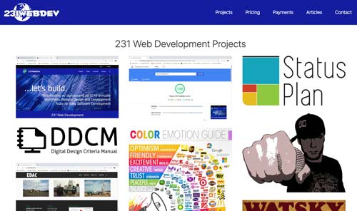 231 WebDev Projects and website designs